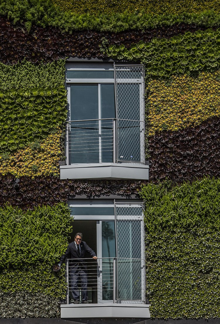 12_MAD_Gardenhouse_Green Wall_photo by Manolo Langis
